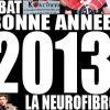 Kokcinelo vous souhaite une bonne année 2013