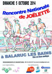 rencontre-nationale-joelette-2014