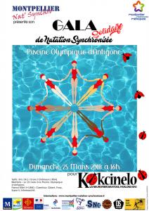 affiche gala montpellier nat synchro